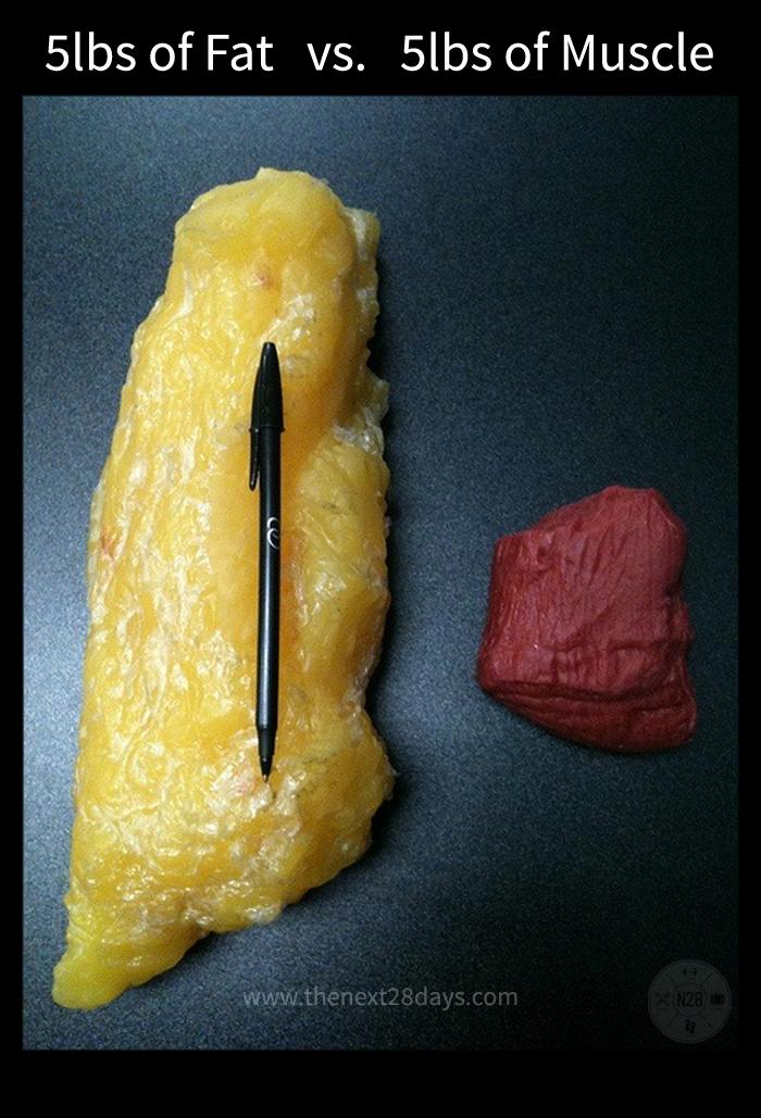 how to achieve 5 body fat