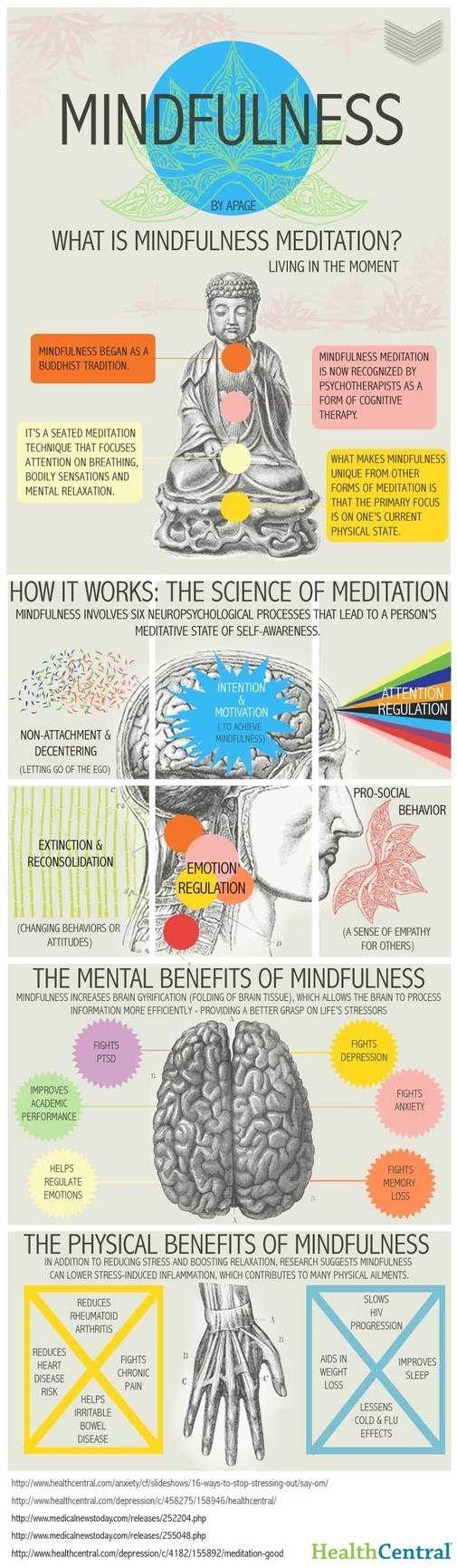 The Mindfulness of Meditation
