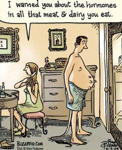 hormones-in-dairy-meat